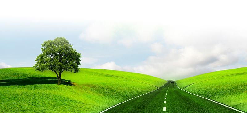 41° camminata tra il verde e l'asfalto